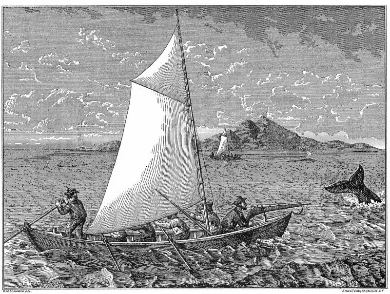 031-1 (3) Monterey Whalers (2)