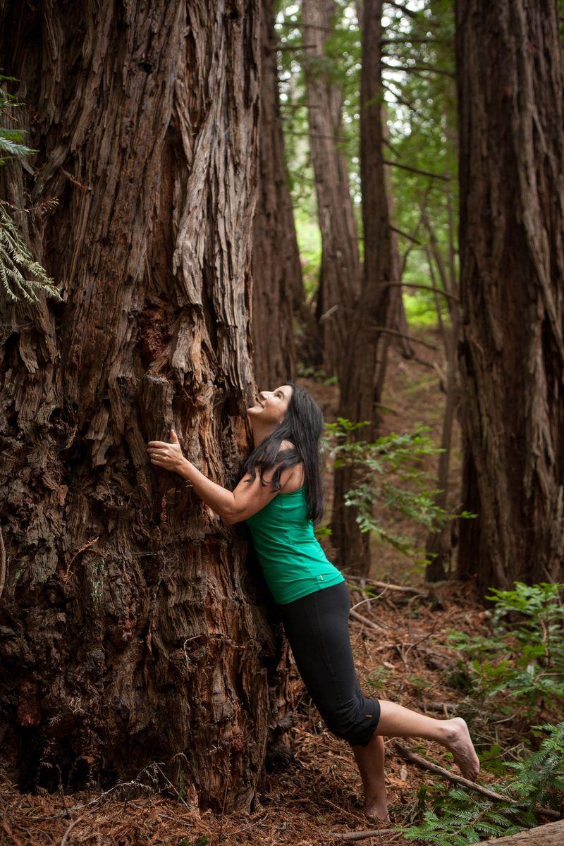 Treehug    Annette Cain