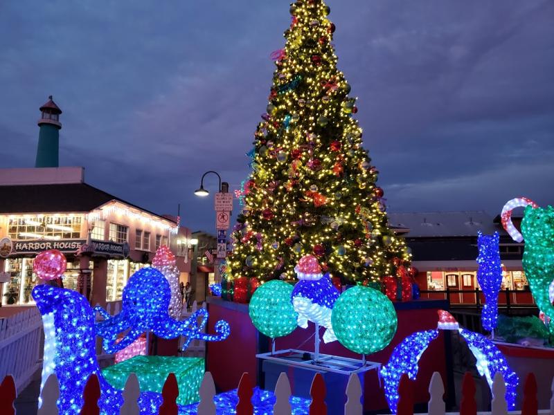 Christmas Tree on the Wharf 2018